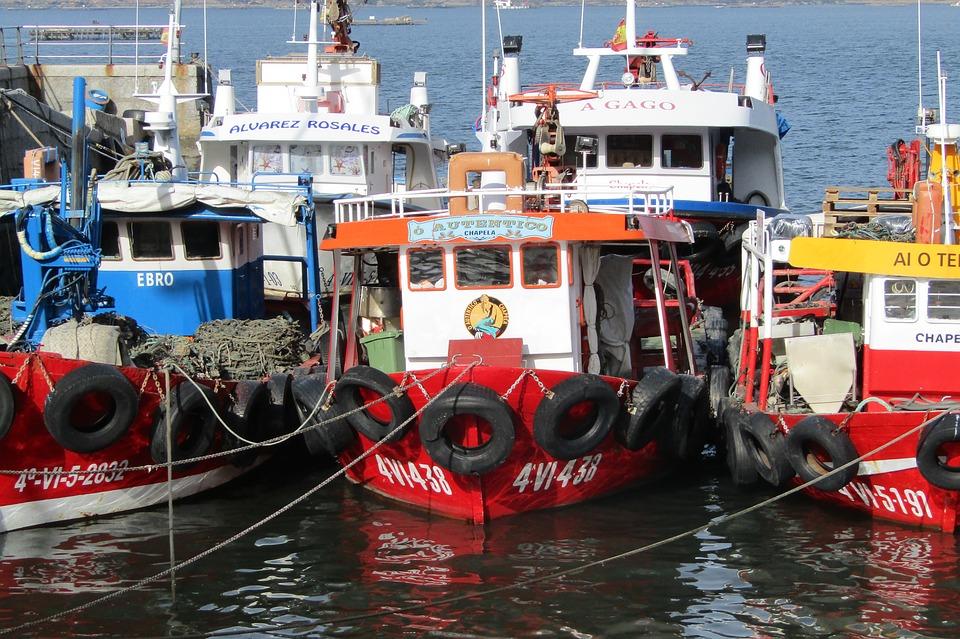 ayudas a la pesca y acuicultura